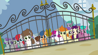 Foals outside Diamond Tiara's front gate S4E15