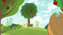 Goldie Delicious bucking an apple tree S9E10