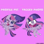 MLP Pony Life Instagram - Twilight Social Differences