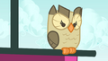 Owlowiscious looking down at Spike S4E23.png