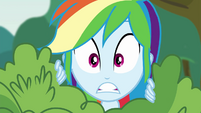 Rainbow Dash hears Pinkie's voice EG3