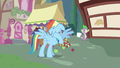 Rainbow Dash just never mind S3E11.png