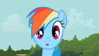 Rainbow Dash wait minute S2E8