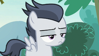 Rumble with a disinterested stare S7E21
