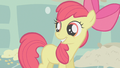 Apple Bloom smiling thinking she has her cutie mark S1E12.png