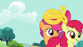 Apple Bloom takes her balloon goldfish S5E19.png