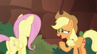Applejack -caught up in the adventure- S8E23