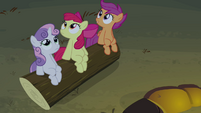 CMC looks up towards Rainbow S3E06
