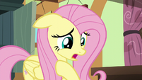 Fluttershy --I hope I did the right thing-- S6E11