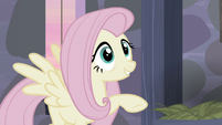 Fluttershy -and, and...- S5E02