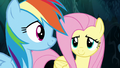 Fluttershy and Rainbow make a breakthrough S6E11.png