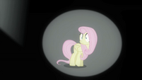Fluttershy horrified S4E14