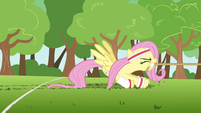 Fluttershy losing to butterflies S2E22