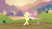 Fluttershy walking on her two front legs S2E22