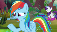 "Rainbow Dash ""too bad we can't do"" S8E17"