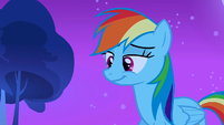 Rainbow Dash smiling S3E6