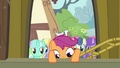 Scootaloo climbing into Pinkie's float S3E4.png