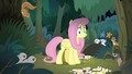 Animals growling at Fluttershy S8E13.png