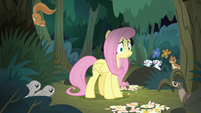 Animals growling at Fluttershy S8E13