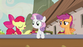 "Apple Bloom ""she's just been orderin' a lot of apples"" S7E8.png"