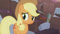 Applejack looking at her family S5E20.png