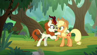 "Autumn Blaze ""you've just arrived"" S8E23"