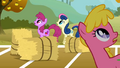 Berryshine, Sweetie Drops, and Cherry Berry look above S1E13.png