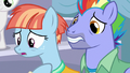 Bow and Windy very worried about Rainbow Dash S7E7.png