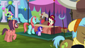 Cherry Jubilee and a stallion selling cherries S5E11.png