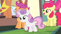 Cutie Mark Crusaders cheering S4E24.png