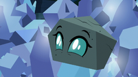 Ocellus transforms into a rock S9E3