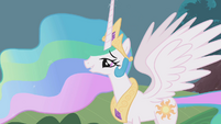"Princess Celestia honored by the ""parade"" S1E10"