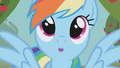 Rainbow Dash day dreaming S1E3.png