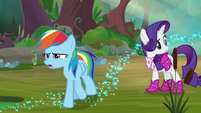 Rainbow Dash thinks; Rarity looks off-screen S8E17