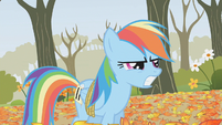 Rainbow Dash thinks Applejack tripped her S1E13