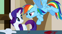Rarity & Rainbow Dash mutral S2E14