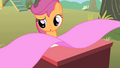 Scootaloo wondering S1E18.png