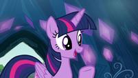 Twilight -as long as you get permission- S9E3