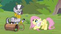 "Zecora ""help from time to time"" S9E18"