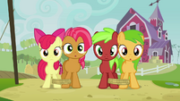 Apple Bloom, Babs and fillies staring S3E08