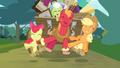Applejack, Big McIntosh and Apple Bloom jumping S4E09.png