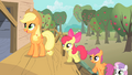 Applejack CMC new clubhouse S1E18.png