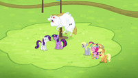 Bulk Biceps joins Rainbow and Fluttershy S4E10