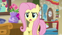 Fluttershy --I know you both want to help-- S6E11