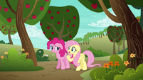 Fluttershy --or anypony else-- S6E18