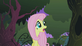 Fluttershy in the Everfree forest S1E17.png