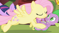 Fluttershy swoops in S01E01.png