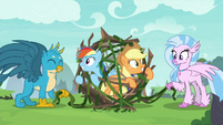 Gallus and Silverstream carry ponies to safety S8E9