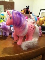 Lauren Faust G1 Twilight toy