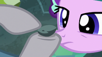 Maud Pie pointing to age lines on Boulder S7E4